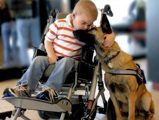 Găsiţi curajul, bunătatea şi speranţa!